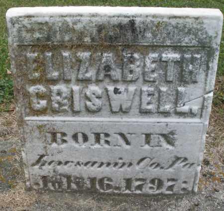 GRISWELL, ELIZABETH - Montgomery County, Ohio | ELIZABETH GRISWELL - Ohio Gravestone Photos