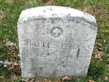HAAS, CHARLES  E. - Montgomery County, Ohio | CHARLES  E. HAAS - Ohio Gravestone Photos