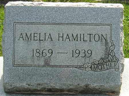 SAUER HAMILTON, AMELIA - Montgomery County, Ohio | AMELIA SAUER HAMILTON - Ohio Gravestone Photos