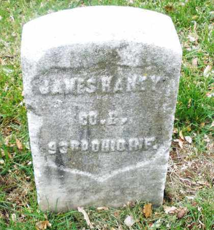 HANEY, JAMES - Montgomery County, Ohio | JAMES HANEY - Ohio Gravestone Photos