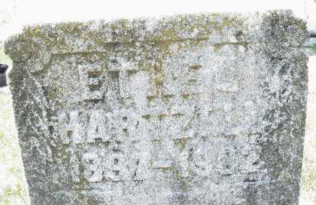 HARTZELL, ETHEL - Montgomery County, Ohio | ETHEL HARTZELL - Ohio Gravestone Photos
