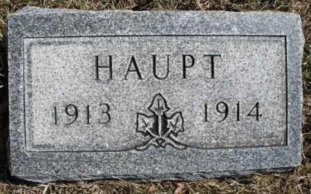 HAUPT, ? - Montgomery County, Ohio | ? HAUPT - Ohio Gravestone Photos