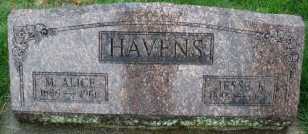 HAVENS, M. ALICE - Montgomery County, Ohio | M. ALICE HAVENS - Ohio Gravestone Photos