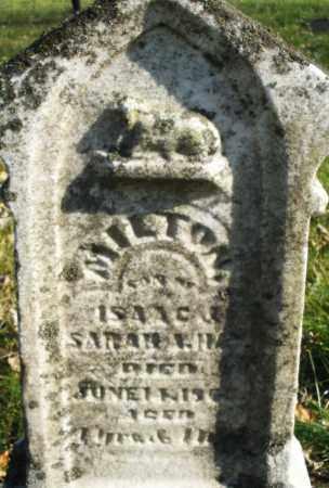 HAY, MILTON - Montgomery County, Ohio | MILTON HAY - Ohio Gravestone Photos