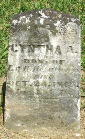 HEETER, CYNTHA A. - Montgomery County, Ohio | CYNTHA A. HEETER - Ohio Gravestone Photos
