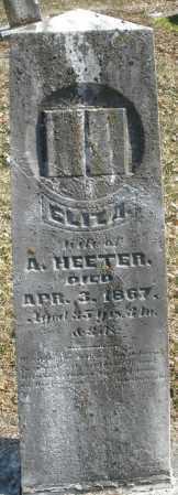 HEETER, ELIZA A. - Montgomery County, Ohio | ELIZA A. HEETER - Ohio Gravestone Photos