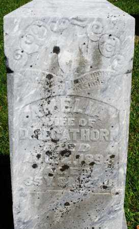 HEGATHORN, AMELIA - Montgomery County, Ohio | AMELIA HEGATHORN - Ohio Gravestone Photos