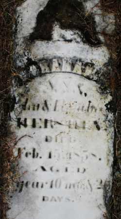 HER-----?, ABRAHAM - Montgomery County, Ohio | ABRAHAM HER-----? - Ohio Gravestone Photos