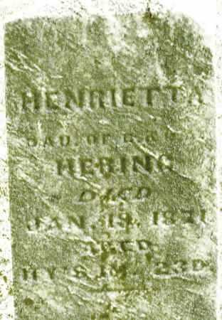 HERING, HENRIETTA - Montgomery County, Ohio | HENRIETTA HERING - Ohio Gravestone Photos