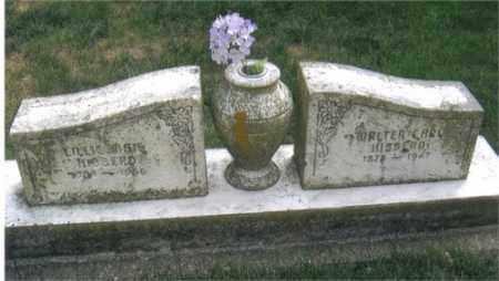 CARL HIBBERD, WALTER - Montgomery County, Ohio | WALTER CARL HIBBERD - Ohio Gravestone Photos