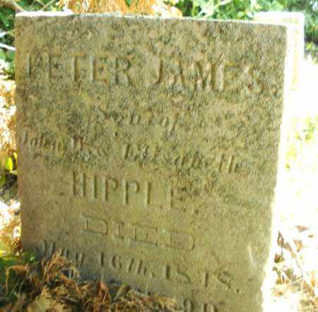 HIPPLE, PETER JAMES - Montgomery County, Ohio | PETER JAMES HIPPLE - Ohio Gravestone Photos