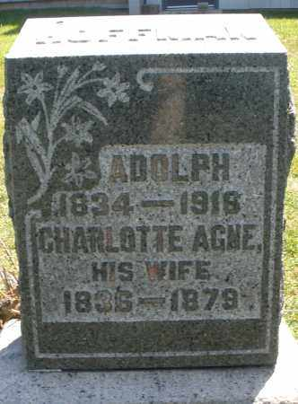 AGNE HOFFMAN, CHARLOTTE - Montgomery County, Ohio | CHARLOTTE AGNE HOFFMAN - Ohio Gravestone Photos