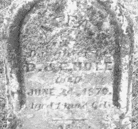 HOLE, INFANT - Montgomery County, Ohio | INFANT HOLE - Ohio Gravestone Photos