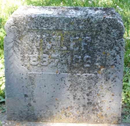 IMLER, ? - Montgomery County, Ohio | ? IMLER - Ohio Gravestone Photos