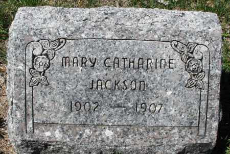 JACKSON, MARY CATHARINE - Montgomery County, Ohio | MARY CATHARINE JACKSON - Ohio Gravestone Photos