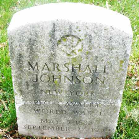 JOHNSON, MARSHALL - Montgomery County, Ohio | MARSHALL JOHNSON - Ohio Gravestone Photos