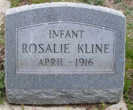 KLINE, ROSALIE INFANT - Montgomery County, Ohio | ROSALIE INFANT KLINE - Ohio Gravestone Photos