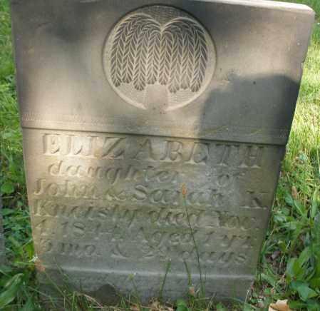 KNEISLY, ELIZABETH - Montgomery County, Ohio | ELIZABETH KNEISLY - Ohio Gravestone Photos
