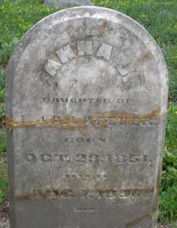LAFEVER, ANNA J. - Montgomery County, Ohio | ANNA J. LAFEVER - Ohio Gravestone Photos