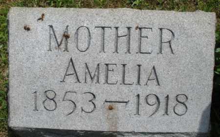 LANDIS, AMELIA - Montgomery County, Ohio | AMELIA LANDIS - Ohio Gravestone Photos