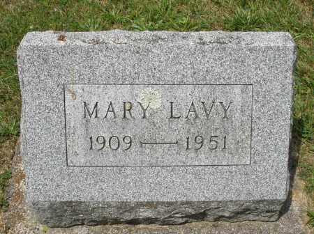 LAVY, MARY - Montgomery County, Ohio | MARY LAVY - Ohio Gravestone Photos