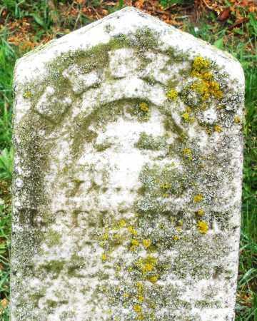 LEHMAN, ELIZA - Montgomery County, Ohio | ELIZA LEHMAN - Ohio Gravestone Photos