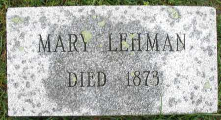 LEHMAN, MARY - Montgomery County, Ohio | MARY LEHMAN - Ohio Gravestone Photos