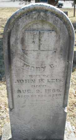 LEIS, MARY - Montgomery County, Ohio | MARY LEIS - Ohio Gravestone Photos