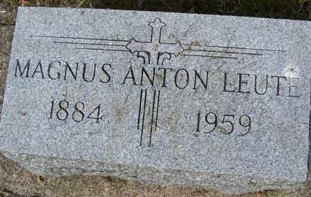 LEUTE, MAGNUS ANTON - Montgomery County, Ohio | MAGNUS ANTON LEUTE - Ohio Gravestone Photos