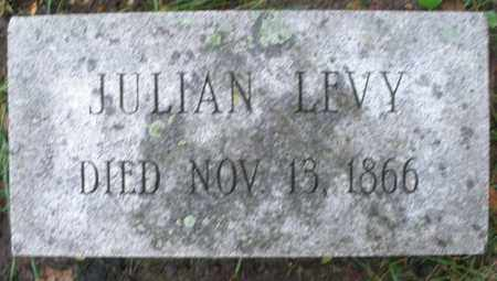 LEVY, JULIAN - Montgomery County, Ohio | JULIAN LEVY - Ohio Gravestone Photos