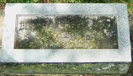 NORRIS LEW, BERTHA - Montgomery County, Ohio | BERTHA NORRIS LEW - Ohio Gravestone Photos