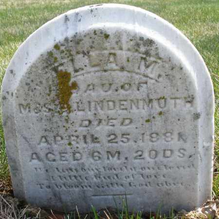 LINDENMUTH, ELLA M. - Montgomery County, Ohio   ELLA M. LINDENMUTH - Ohio Gravestone Photos