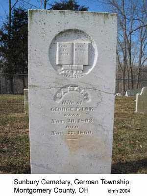 LOY, SARAH - Montgomery County, Ohio | SARAH LOY - Ohio Gravestone Photos