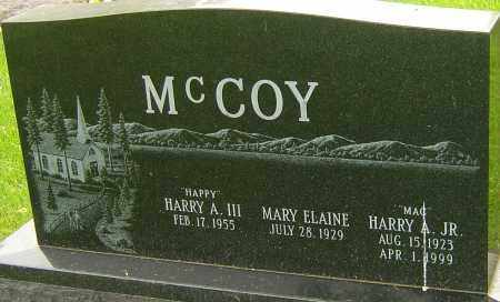 MCCOY JR., HARRY A - Montgomery County, Ohio | HARRY A MCCOY JR. - Ohio Gravestone Photos