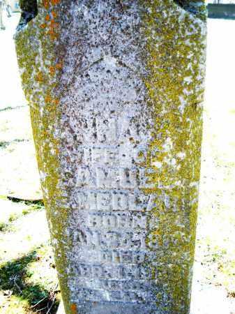 MEDLAR, SAMUEL E. - Montgomery County, Ohio | SAMUEL E. MEDLAR - Ohio Gravestone Photos
