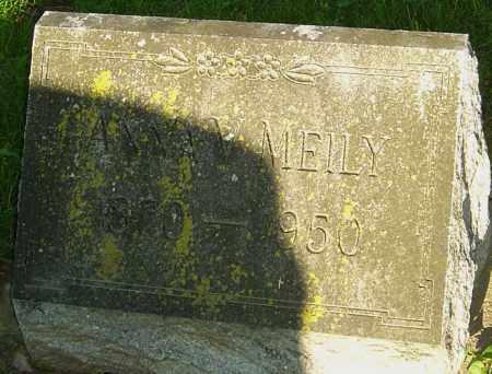 MEILY, ANNA - Montgomery County, Ohio | ANNA MEILY - Ohio Gravestone Photos