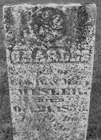 MESTER, CHARLES - Montgomery County, Ohio | CHARLES MESTER - Ohio Gravestone Photos