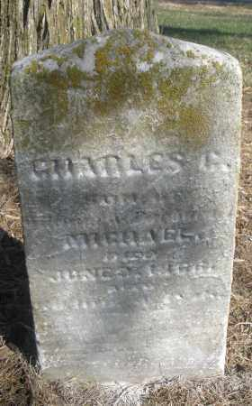 MICHAEL, CHARLES C. - Montgomery County, Ohio | CHARLES C. MICHAEL - Ohio Gravestone Photos