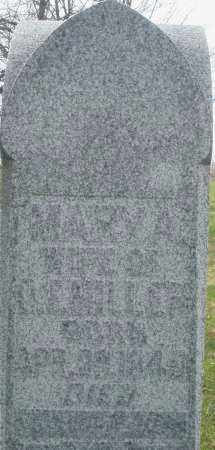 MILLER, MARY A. - Montgomery County, Ohio | MARY A. MILLER - Ohio Gravestone Photos