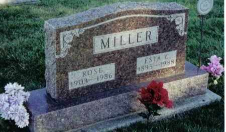 MILLER, ROSE - Montgomery County, Ohio | ROSE MILLER - Ohio Gravestone Photos