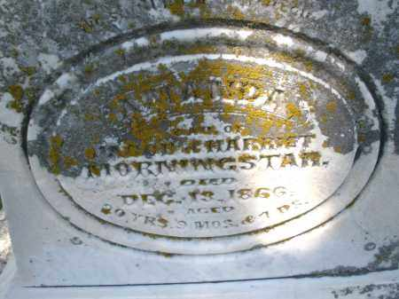 MORNINGSTAR, AMANDA - Montgomery County, Ohio | AMANDA MORNINGSTAR - Ohio Gravestone Photos