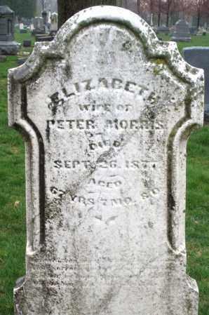 MORRIS, ELIZABETH - Montgomery County, Ohio | ELIZABETH MORRIS - Ohio Gravestone Photos