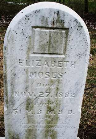 MOSES, ELIZABETH - Montgomery County, Ohio | ELIZABETH MOSES - Ohio Gravestone Photos