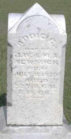 NEWSOCK, ADDIE - Montgomery County, Ohio | ADDIE NEWSOCK - Ohio Gravestone Photos
