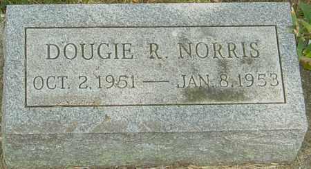 NORRIS, DOUGIE R - Montgomery County, Ohio | DOUGIE R NORRIS - Ohio Gravestone Photos