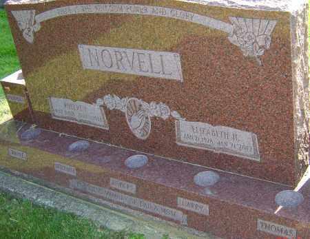 NORVELL, ELIZABETH - Montgomery County, Ohio | ELIZABETH NORVELL - Ohio Gravestone Photos
