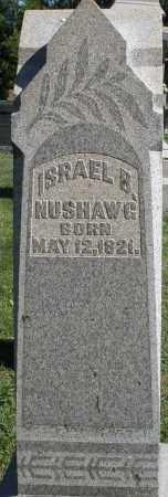 NUSHAWG, ISRAEL B. - Montgomery County, Ohio | ISRAEL B. NUSHAWG - Ohio Gravestone Photos
