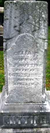 NUTTING, CELIA - Montgomery County, Ohio | CELIA NUTTING - Ohio Gravestone Photos