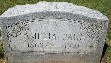 PAUL, AMELIA - Montgomery County, Ohio | AMELIA PAUL - Ohio Gravestone Photos