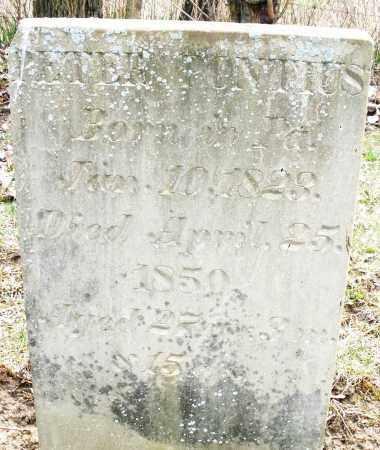 PONTIUS, PETER - Montgomery County, Ohio   PETER PONTIUS - Ohio Gravestone Photos